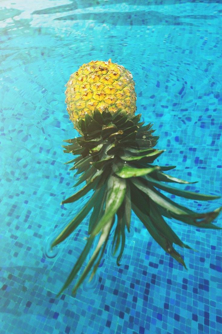 Carrelage piscine antidérapant Vienne 86